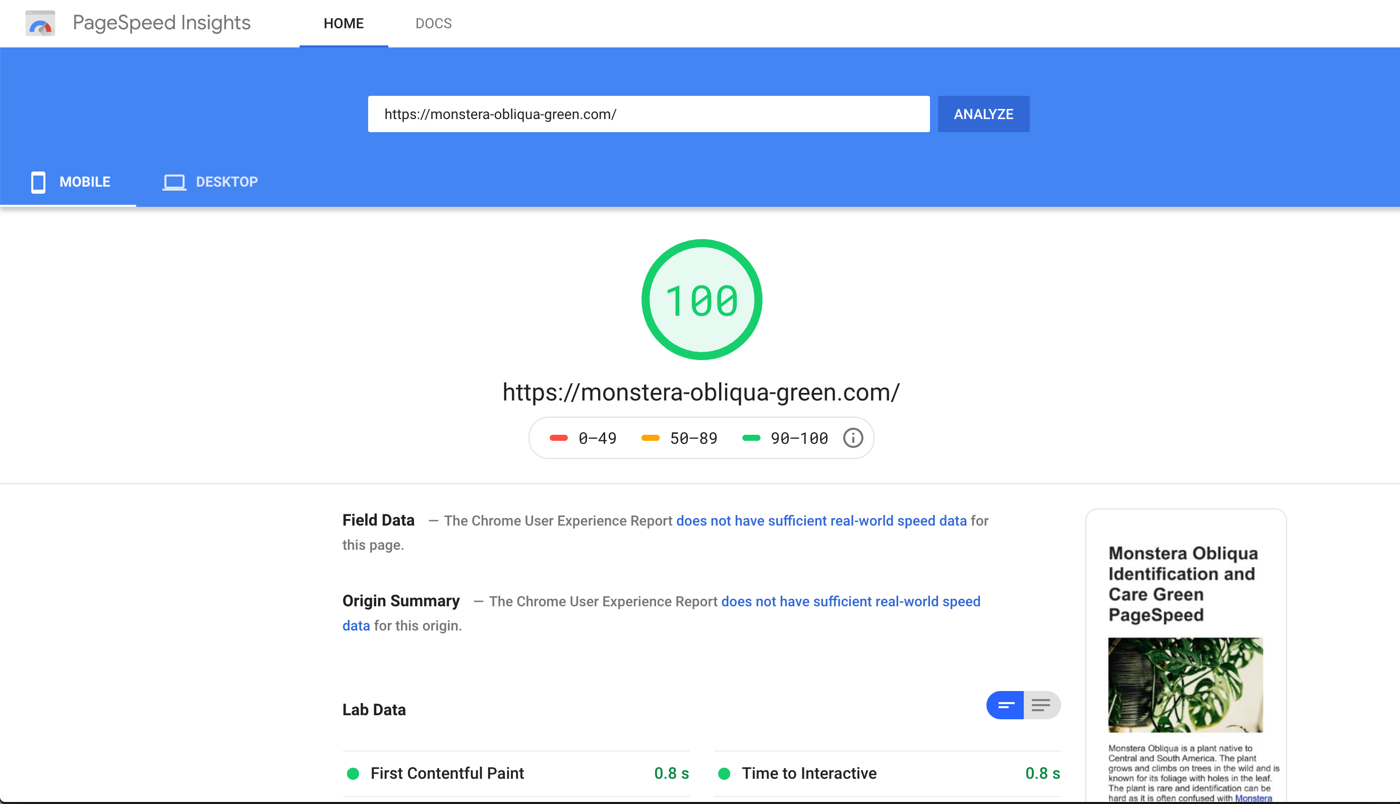Green page speed score
