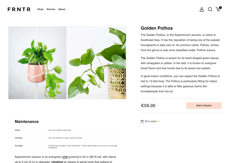 Screenshot of the product page eCommerce built with VueJS and NuxtJS