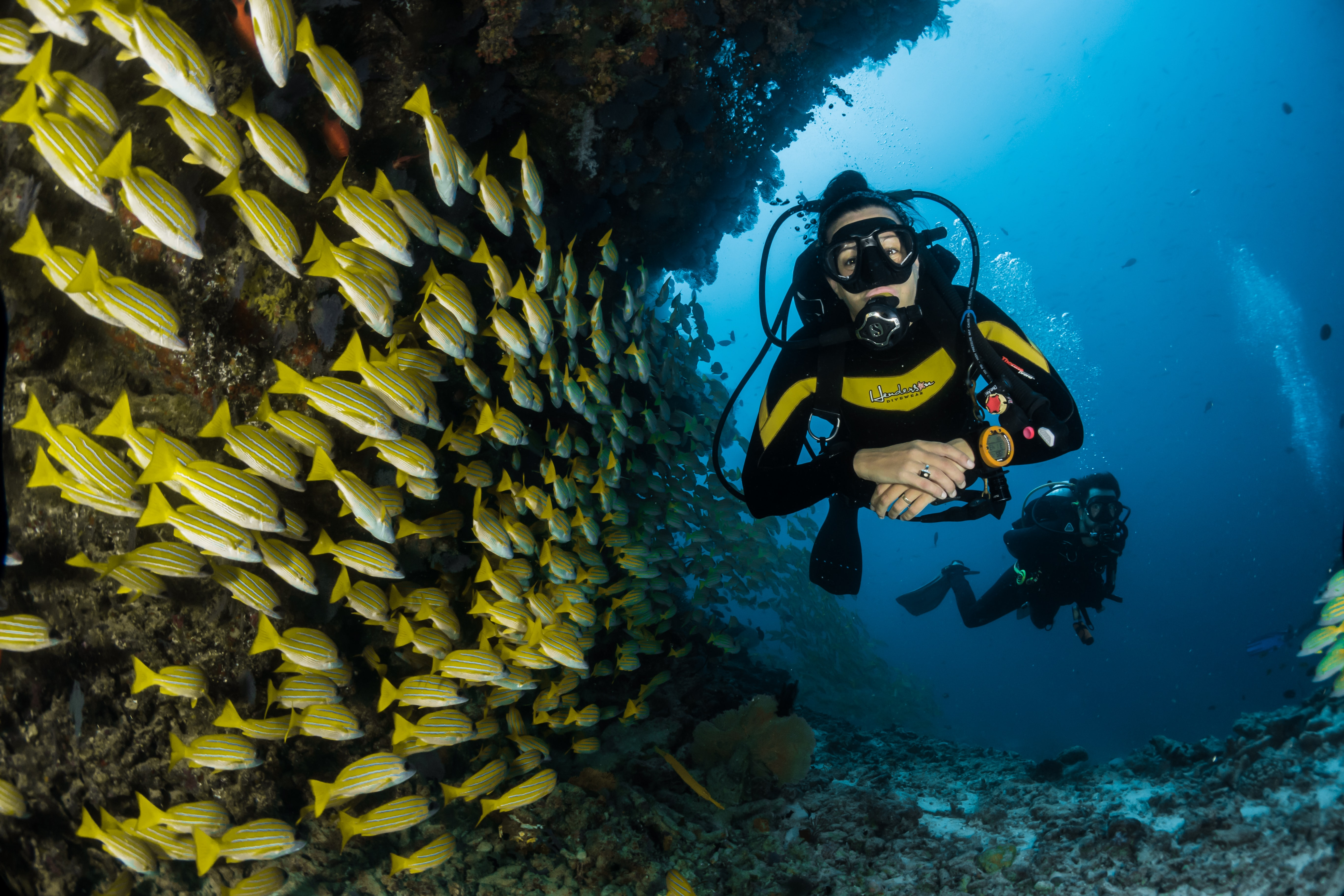 Eco Conscious Dive Spots Around The World
