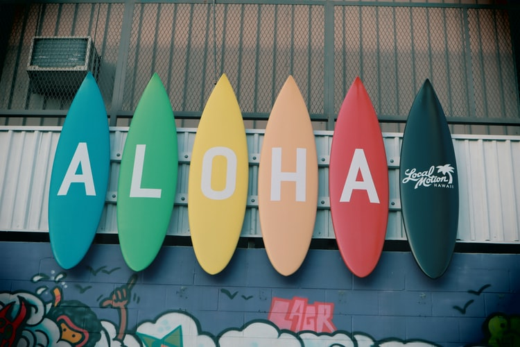 Can You Live Happily With A One Board Quiver?