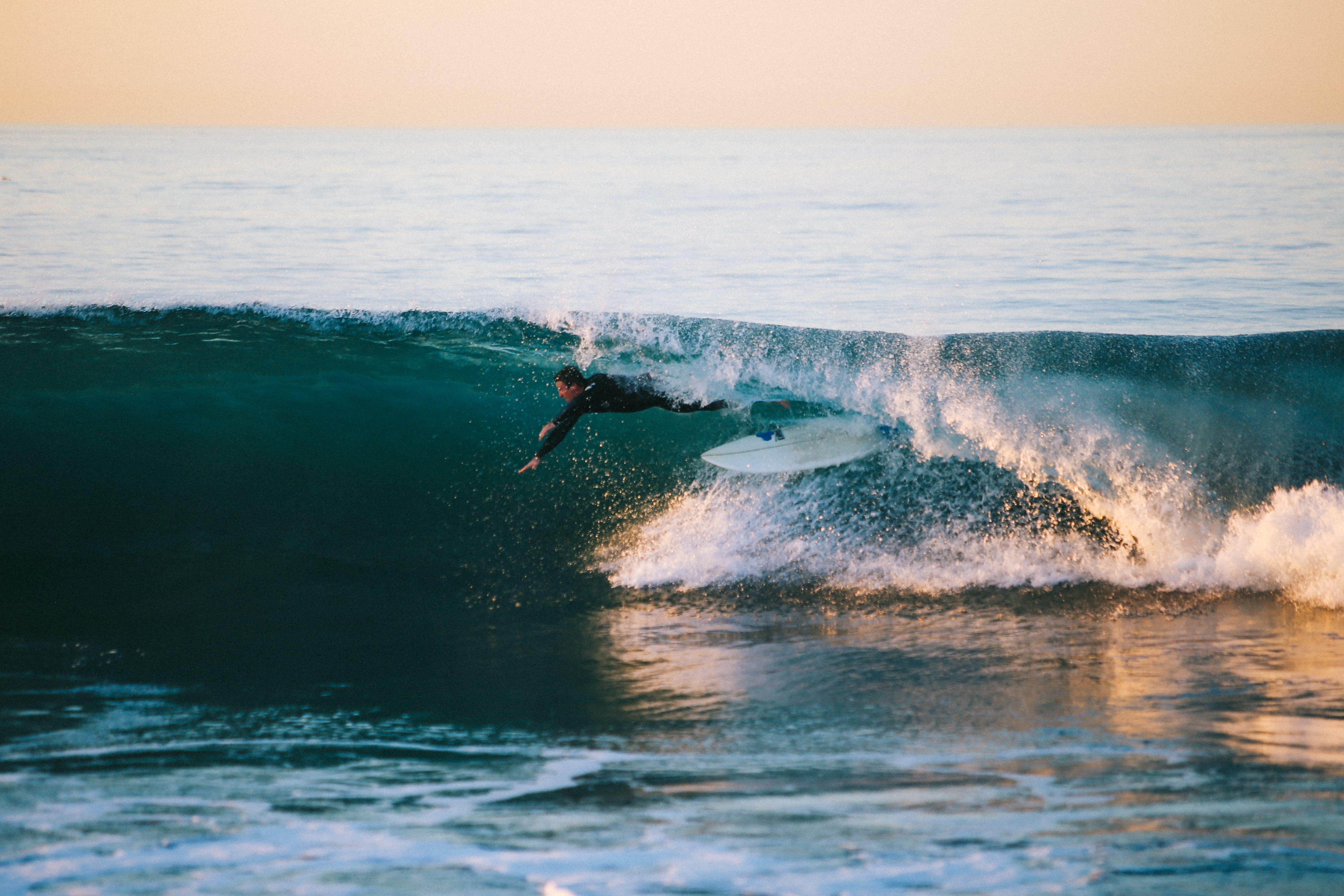 Un tour d'horizon du surf 2020